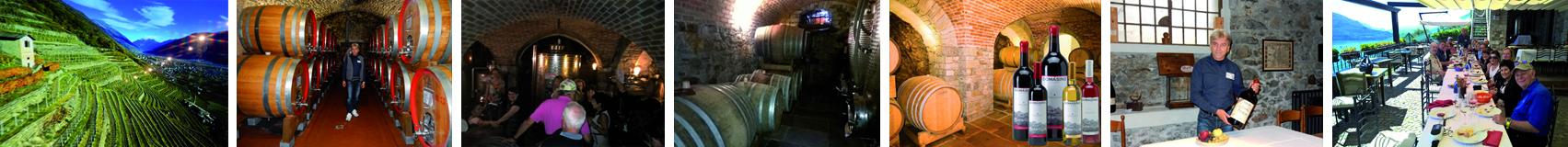 Degustação de vinhos Lago de Como