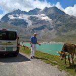 Incontri sulla rotta del Bernina