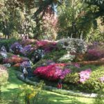 Villa Carlotta Botanic Garden
